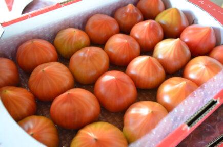 うまかんベェ~トマト