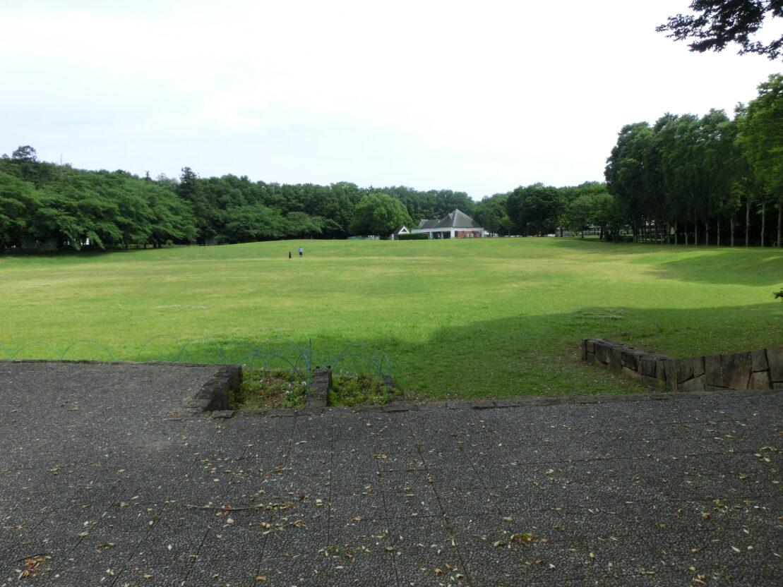 埼玉農林公園 (1)
