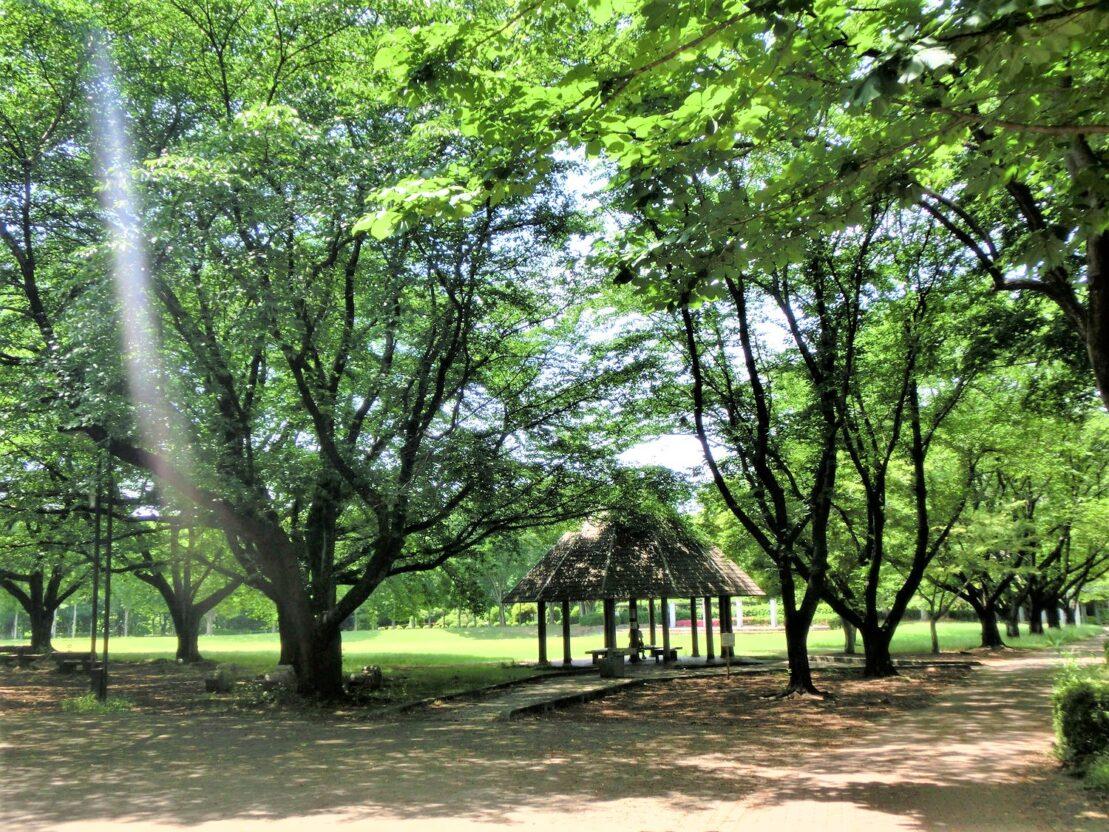 1農林公園 (1)
